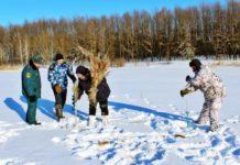 Спасение рыбы от замора зимой
