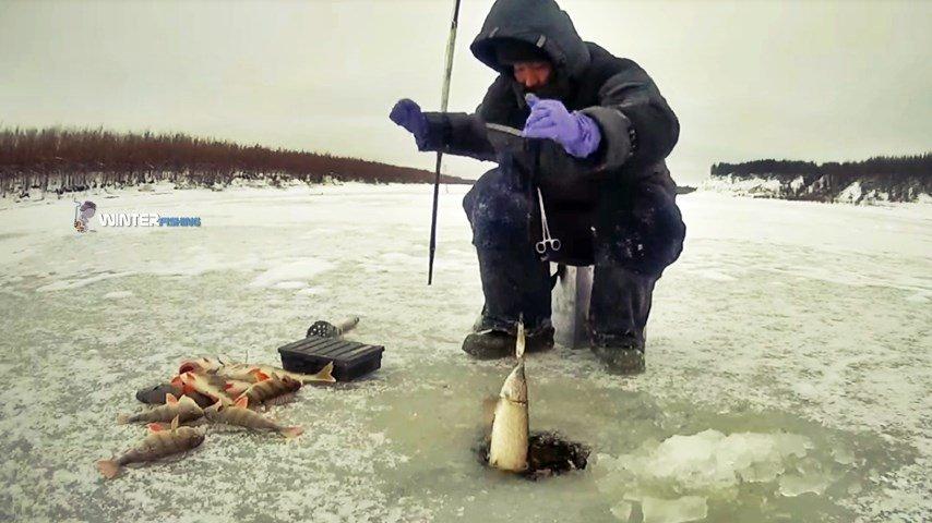 зимняя рыбалка на жерлицы в якутии