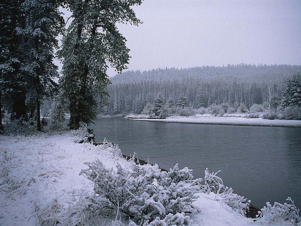 рыбалка с берега зимой